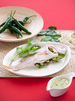 steamed snapper with green curry sauce