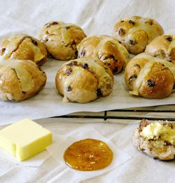 Anathoth Farm Apricot Hot Cross Buns