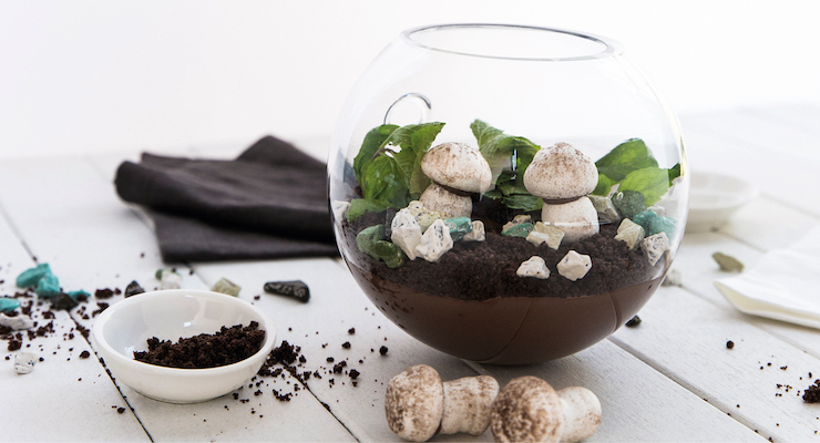 Recipe: Edible Terrarium